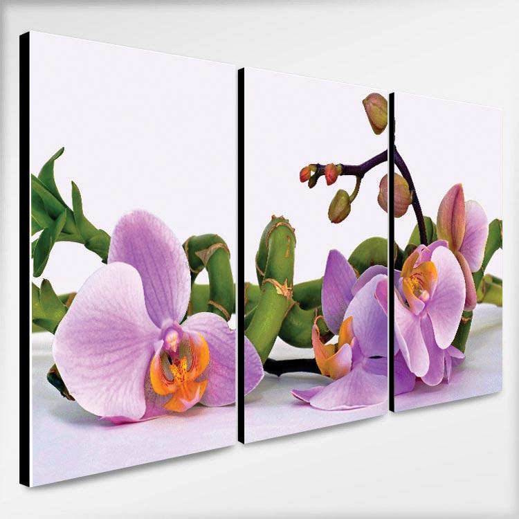 ภาพติดผนัง รูปดอกกล้วยไม้ สีม่วง แต่งห้อง