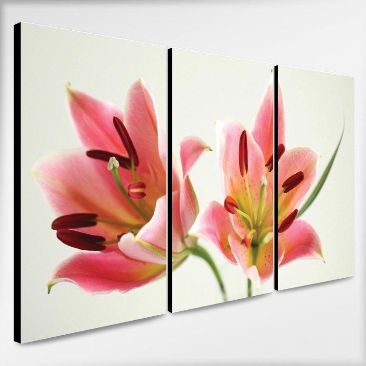 กรอบรูปติดผนัง ห้องนอนโทนสีชมพู ดอกทิวลิป