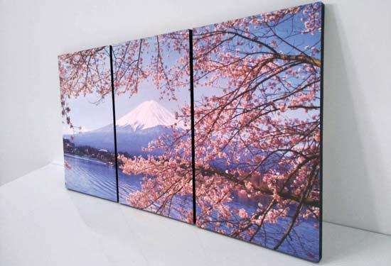 รูปภาพติดผนังห้องนอน สีชมพู พูเขาไฟฟูจิ