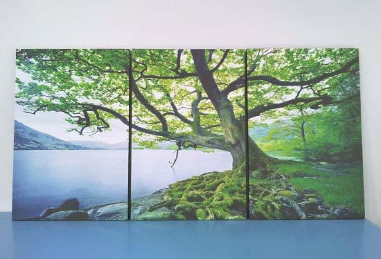 กรอบรูป Canvas ต้นไม้ริมน้ำ สีเขียว