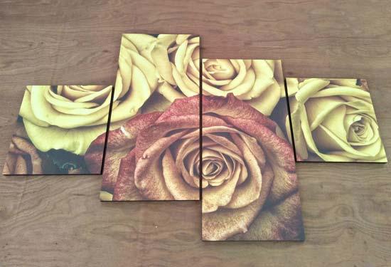 ภาพติดผนัง สไตล์โมเดิร์น ดอกกุหลาบ วินเทจ