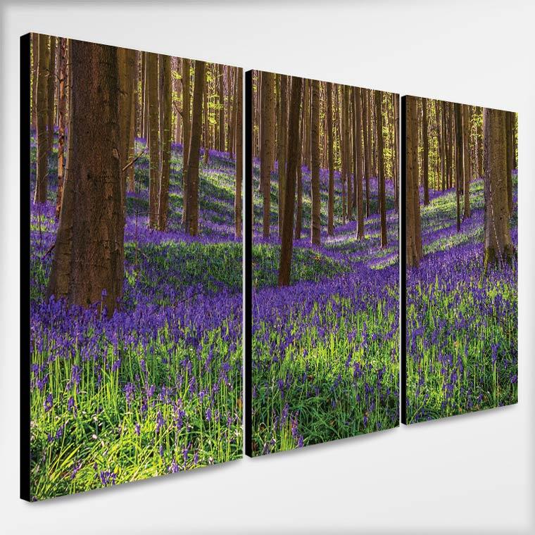 รูปติดผนัง วิวทุ่งดอกไม้ในป่า