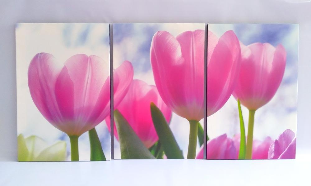 รีวิว รูปติดผนัง ดอกทิวลิป สีชมพู