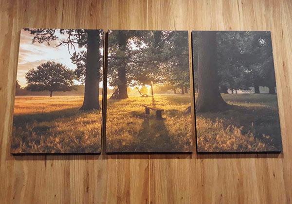 รูปติดผนัง วิวแสงอาทิตย์ขึ้นตอนเช้า