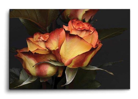 กรอบรูป ดอกกุหลาบ วินเทจ