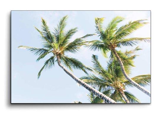 รูปภาพติดผนังห้องนอน สไตล์ทะเล ต้นมะพร้าว