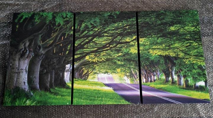 รูปติดผนังวิว ถนนอุโมงต้นไม้