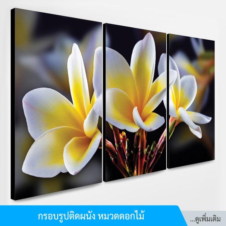 title-frame_flower-1