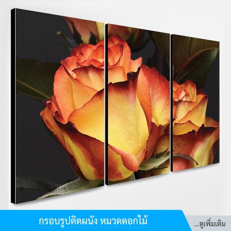 title-frame_flower-3