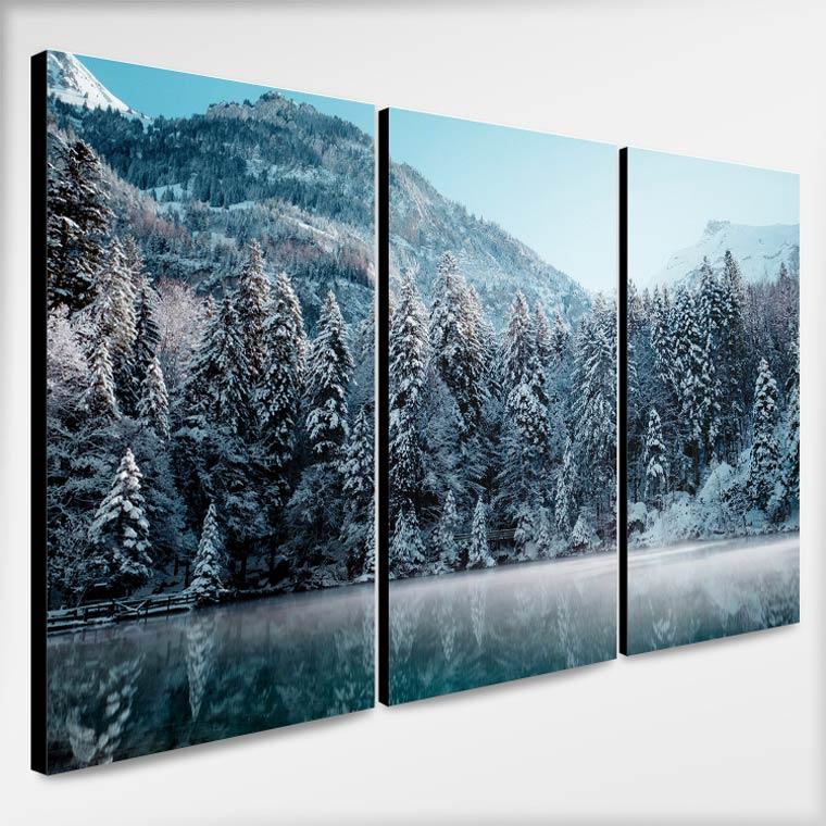 รูปติดผนัง โทนสีฟ้า เทา วิวป่าสนฤดูหนาว