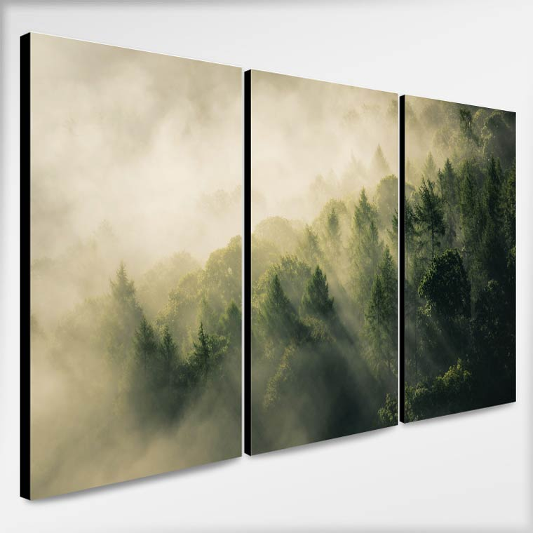รูปติดผนัง ฑรรมชาติ ป่าหมอกสีเขียว
