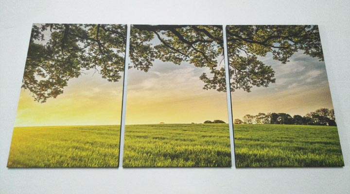 wall-decor-canvas-3