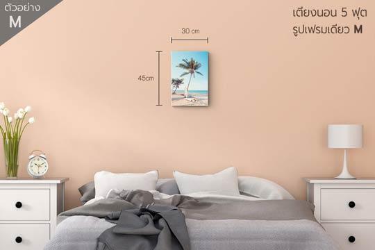 ภาพติดผนัง แต่งบ้าน ห้องนอน กรอบรูป ไซส์M